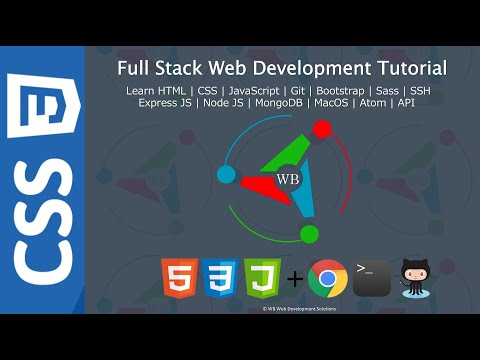 10. Element, ID And Class Selectors - Full Stack Web Development Tutorial Course