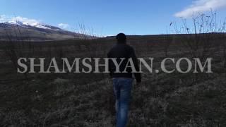 Կոտայքի մարզում գյուղացիների մրգատու այգիների ծառերը դաշտային մկները կրծել են և ոչնչացրել