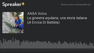 La ginestra aquilana, una storia italiana (di Enrica Di Battista)