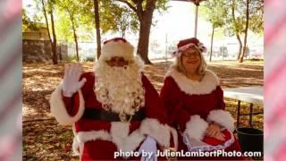 Fort Report: Birds' Christmas Tree event