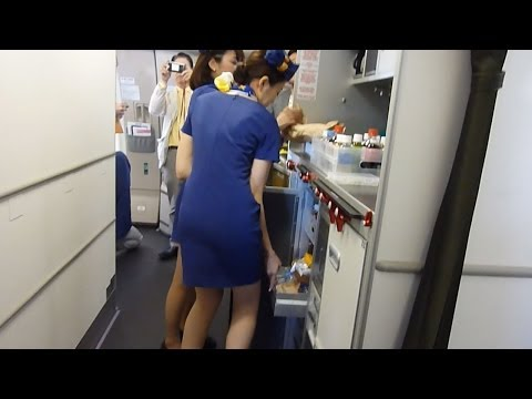 CAはミニスカート スカイマークがA330就航