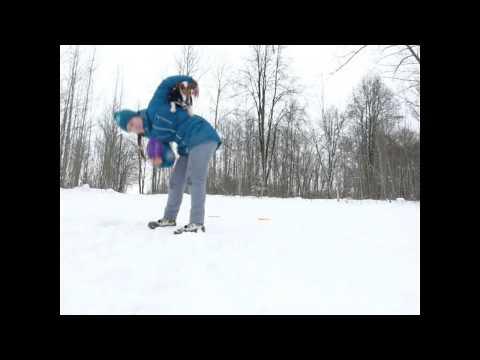 Frisbee Freestyle Training jack-russell terrier Greta