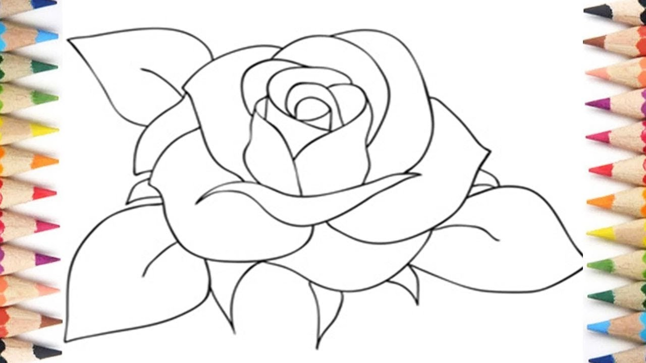 Teach Me How Drawing A Rose Easy Step By Step For ...