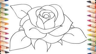rose easy step beginners teach drawing