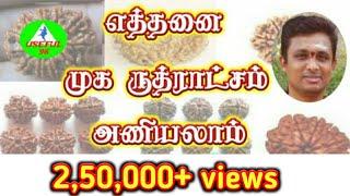 எத்தனை முக ருத்ராட்சம் அணியலாம் Rudraksha in tamil