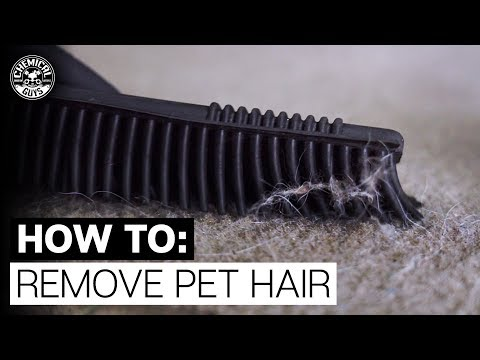 how-to-remove-pet-hair-from-fabric-&-carpet!---chemical-guys