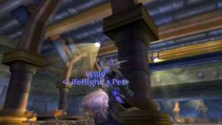 world of warcraft sleepy willy nukes a critter