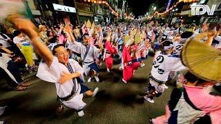 両国広場の輪踊り 阿波踊り有名連が街角で乱舞 Dancing Everywhere