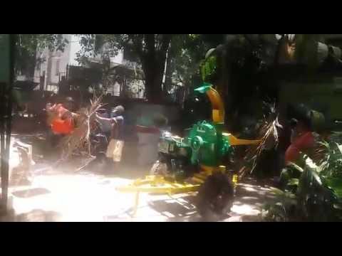 Palm Leaf  60 max - shredder