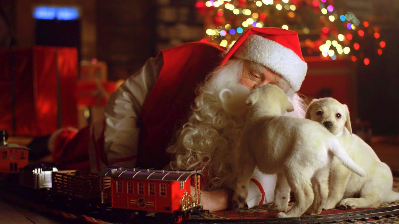video message from santa claus 2016 trailer youtube