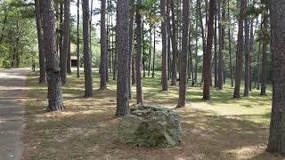 Free Camping Review Pine Ridge Campground and Recreation Area Missouri