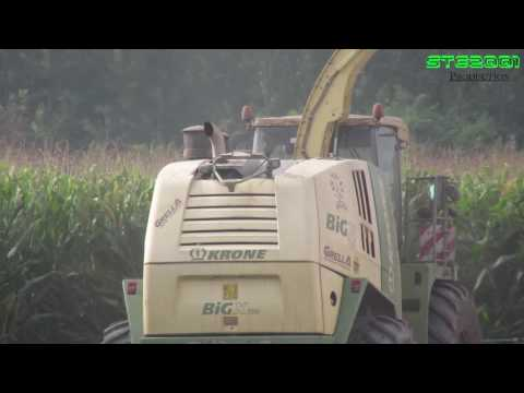 Krone Big X700 + Krone Easy Collect [Fendt New Holland/ Crosetto / Vanara] |Mais Silage| AgriSala