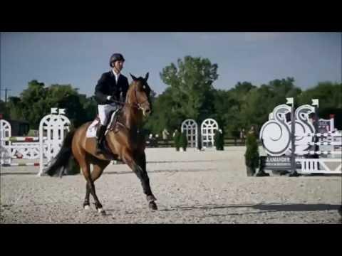 Admirons la beauté de ce sport... - Passion Equitation