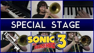 Sonic the Hedgehog 3 - Special Stage ‖ Eric L.