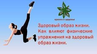 Здоровый образ жизни Как влияют физические упражнения на здоровый образ жизни