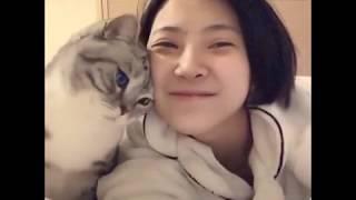Pets love || funny animals || Quàng Thượng xin hãy tư trọng 😹