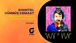 Shantel & Cümbüş Cemaat - Başındaki Yazmayı Sarıya mı Boyadın (İstanbul)