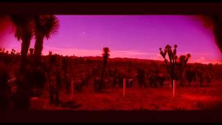 InTechnicolour - Tortoise (Official Video)