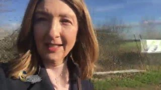 Victoria Derbyshire's breast cancer video diary: Final Chemo - BBC News