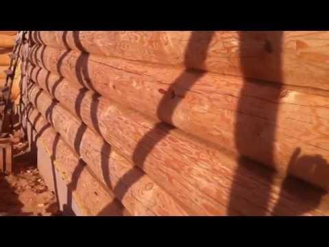 Дом из бревна, Северный лес!!!