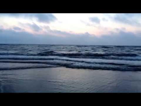 Hoek van Holladn Beach Walk