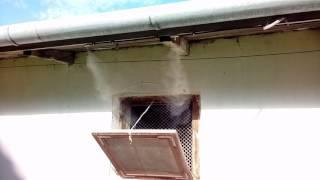 UltraMist: chłodzenie mgłą wodną w kurniku