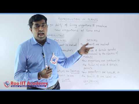 Reproduction In Plant Part 1 Biology Pre foundation Std 7th video lecture thumbnail