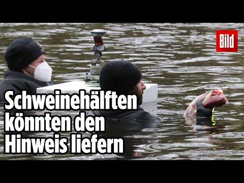 Grusel-Bilder in Hamburger Kanal: So will die Polizei den Mord an Prostituierter aufklären