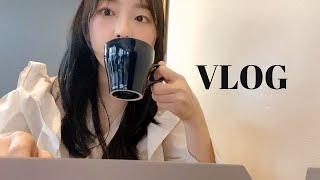 Vlog 일상 브이로그…