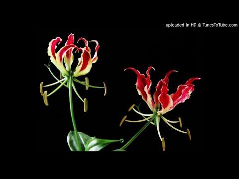 Engada Pona (Duet) - Abiyum anuvum
