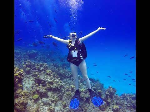 Devil's Grotto-Grand Cayman SCUBA Diving 2014 HD