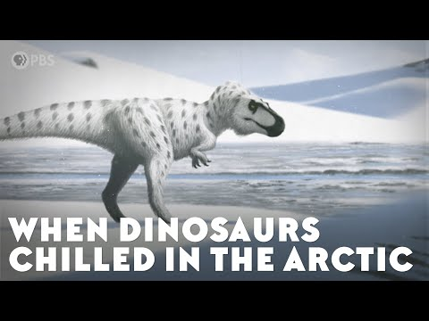 When Dinosaurs Chilled in the Arctic