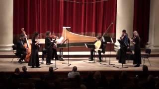 Non sa che sia dolore BWV 209 - Sinfonia - J.S BACH