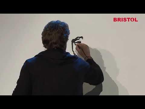 Sheikh Khalifa Excellence Award!