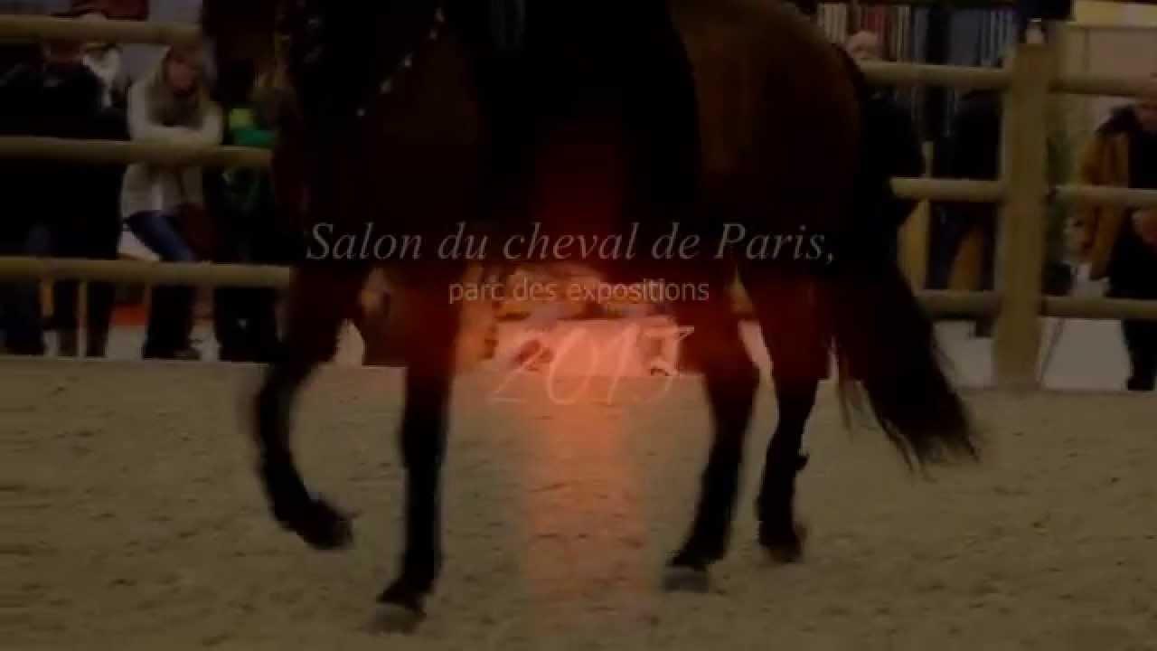 Salon du cheval de paris 2013 youtube for Salon du cheval paris adresse