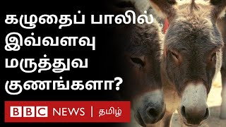 Donkey Milk :1 Litre 7000 rs; is it true? | Immunity booster | Fact Check