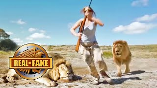 LION TAKES REVENGE ON TROPHY HUNTER - real or fake?