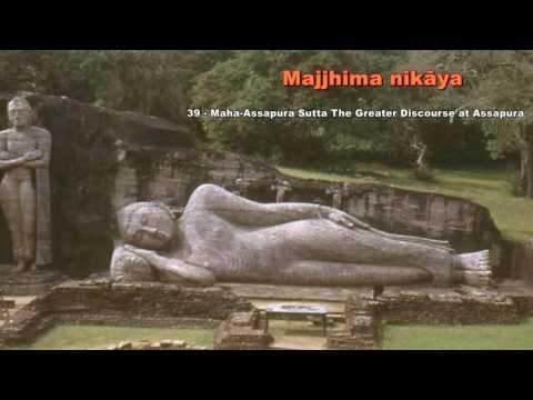 Majjhima nikāya 39   Maha Assapura Sutta The Greater Discourse at Assapura