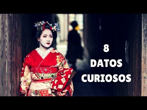 GEISHAS 8 CURIOUS data that you didn't know. (SUB ENG)