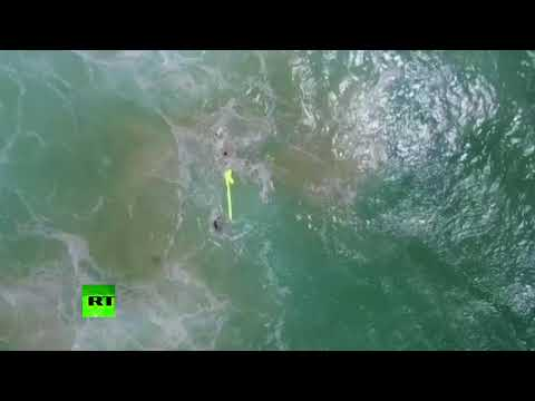 New era of rescue services? Drone saves two swimmers in 'world first'