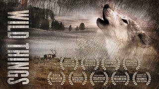 WILD THINGS Trailer