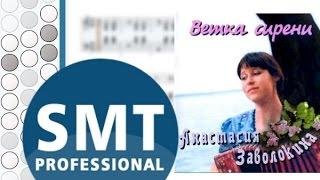 Как играть на баяне Ветка сирени упала на грудь | How to play on accordion | SMT Pro