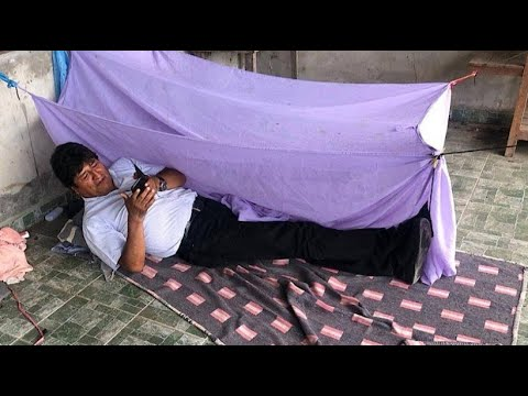 Amazonas brennt: Bolsonaro, Morales unter Beschussиз YouTube · Длительность: 2 мин42 с
