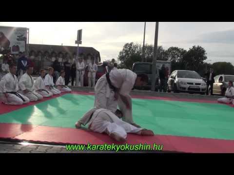 Kiyosumi Dojo bemutató Dechatlon 2012.09.22. Debrecen