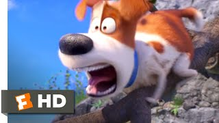 The Secret Life of Pets 2 - Go Fetch the Sheep! Scene (6/10) | Movieclips