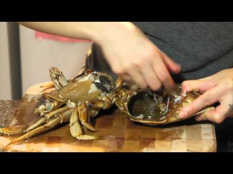 如何處理活蟹  How to kill a live crab humanely and clean it