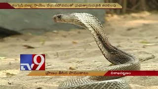 Snake Catcher killed by snake bite | Visakhapatnam - TV9 Now
