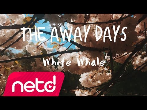 The Away Days - White Whale