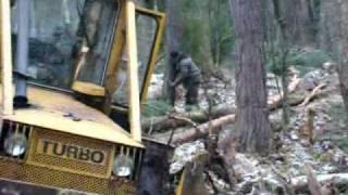 praca w lesie:lkt 81turbo & ursus 1014