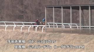 ショコラ 第15話